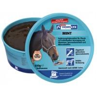 HORSLYX™ MINT lizika za konje