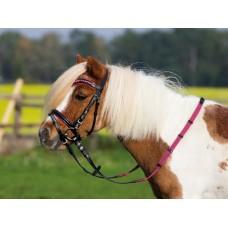 Angleška uzda za male ponije SONNY