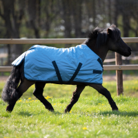 Nepremočljiva dežna odeja za ponija ali žrebička WINDCHILLY