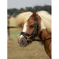 Angleška uzda za male ponije LITTLE