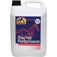 Cavalor PERFORMANCE, tekoči vitamini in minerali,5L