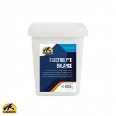 CAVALOR Electrolyte Balance, kvalitetni in okusni elektroliti in minerali, 800 g