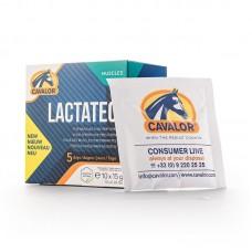 CAVALOR LACTATEC, hitra pomoč za mišice in mobilnost konja 10 X 15 g