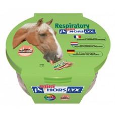 HORSLYX™ RESPIRATORY lizika za konje - za dihala