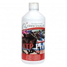 Officinalis ATP PRO Energizing, 1kg, energija in regeneracija